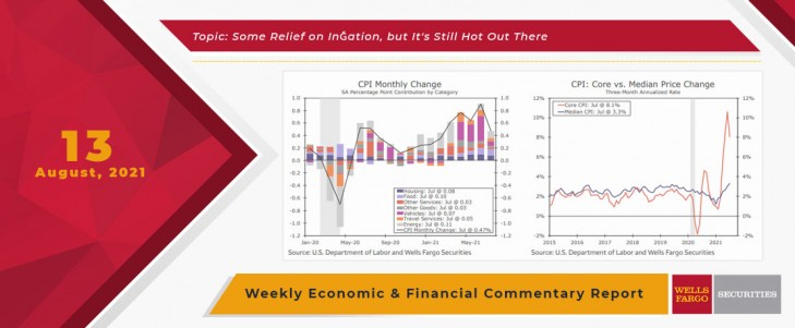 This Week's State Of The Economy - What Is Ahead? - 13 August 2021